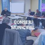 conseil_municipal_vignette