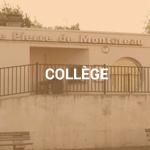 vignette-college